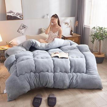 凯诗风尚羊羔绒冬被保暖被芯2-10斤多规格可选