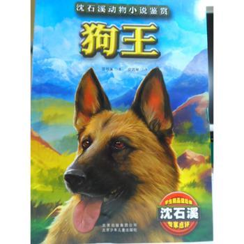 沈石溪动物小说鉴赏 狗王 童书 中国儿童文学 动物小说 沈石溪 著,安武林