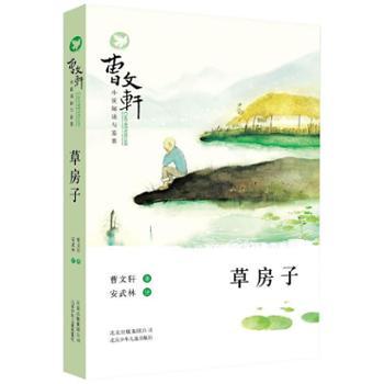 草房子 儿童文学作家曹文轩的经典作品