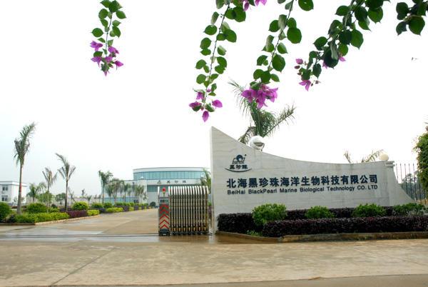 北海黑珍珠海洋生物科技有限公司