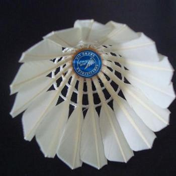 SJ品牌羽毛球12只装复合木底白鸭毛