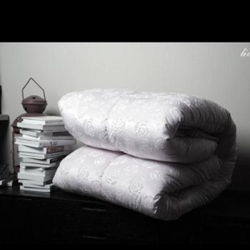 520家纺 双人床单人床床上用品舒适床品 凡以柔羽丝绒被 双人加厚被子被芯