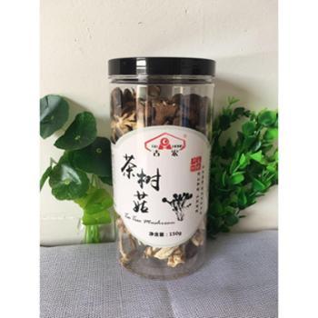 【古宏】茶树菇干货不开伞剪根 罐装 150g