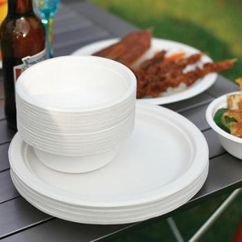 e-Rover烧烤世家户外烧烤食品级一次性纸盘纸碗餐具纸盘+纸碗