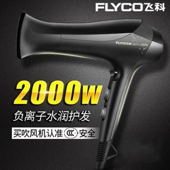飞科(FLYCO)FH62662000W大功率电吹风飞科电吹风FH6266冷热风家用吹风机理发店大功率负离子发廊吹风筒