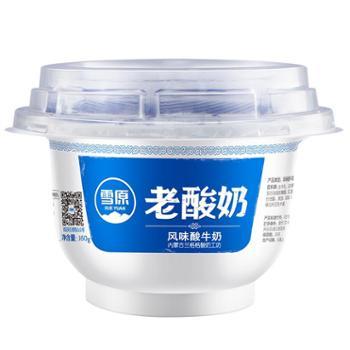 兰格格低温老酸奶低温风味酸牛奶乳酸菌活菌发酵160gx12碗整箱装
