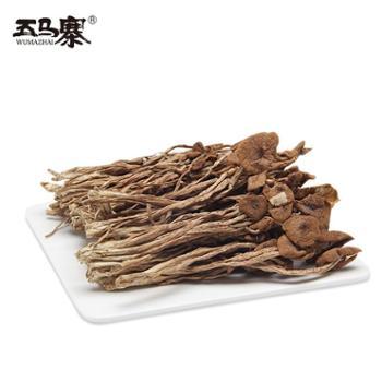 五马寨广东特产韶关茶树菇干货不开伞农家特产