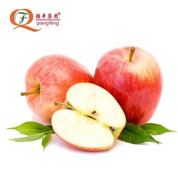 强丰 陕西红富士苹果5斤装 单个200-300g左右