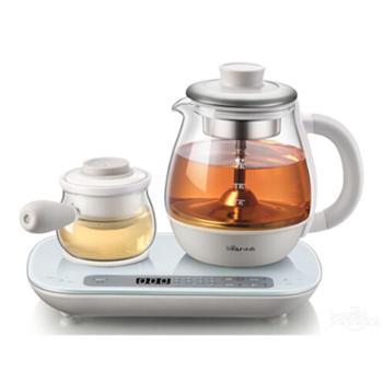 Bear/小熊 ZCQ-A08E1煮茶器家用玻璃全自动喷淋式黑茶普洱养生壶