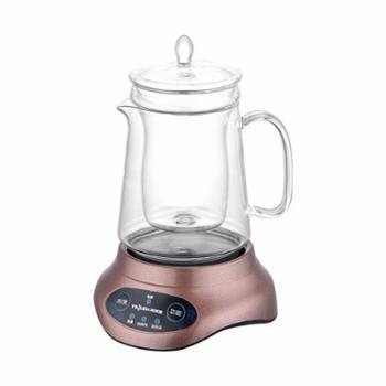 特莱雅 茶炉套装玻璃养生壶 多功能煮温茶器 茶具配件 迷你燕窝炖盅隔水炖
