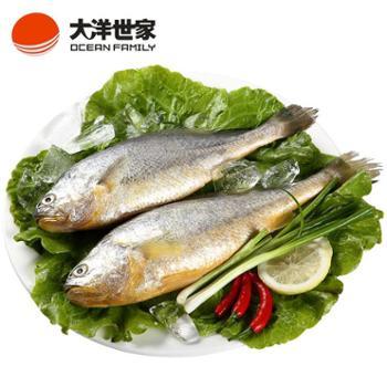 浙江地方汇冷冻东海大黄鱼(两条装)700g黄花鱼舟山特产