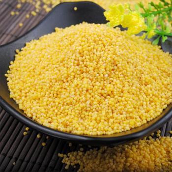 陕北五谷杂粮黄小米500g真空装