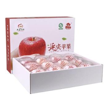 【延安中果果哒哒】12枚85mm礼盒红富士