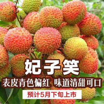 628搜实惠囍物生活·妃子笑·荔枝4.5斤装顺丰空运包邮广东货仓发货