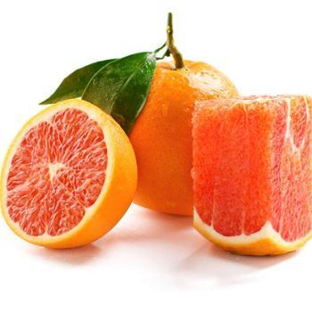 誉福园脐橙中华红中果装单果果径70-75mm