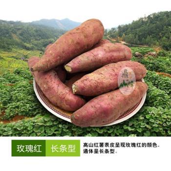 鼎峰农业高山红薯10斤装 地瓜 新鲜番薯