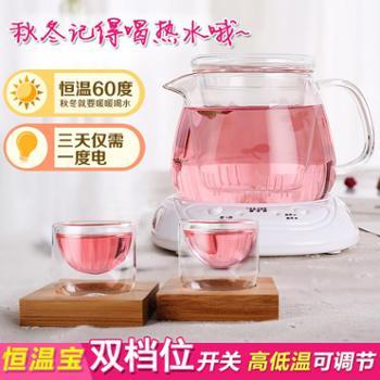 物生物加热杯垫花茶壶玻璃茶壶耐热保温泡茶茶具家用过滤电恒温水壶套装保温60℃