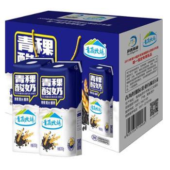 青藏牧场康美包青稞酸奶