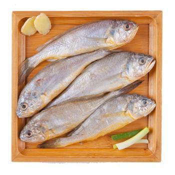 舟山野生小黄鱼(7—8条)300g(仅限上海地区)