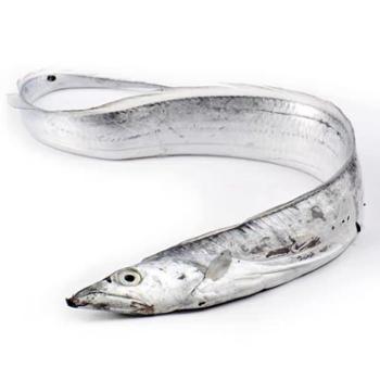 摩时渔鱼舟山雷达网小眼睛带鱼3斤装