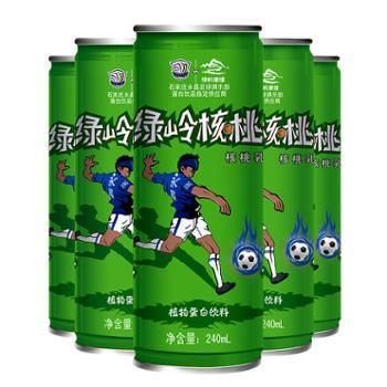 绿岭 核桃乳植物蛋白饮料 240ml×8罐