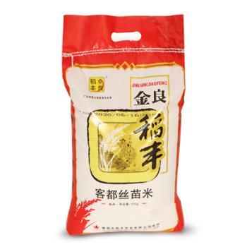 金良稻丰 客都丝苗米新米大米香米南方籼米广东农家绿色食用家庭米 10kg