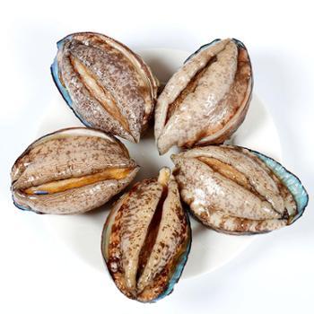 海鲜颂东山岛冷冻鲍鱼火锅食材500g(约8±1只)