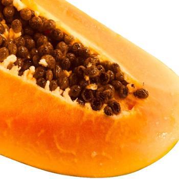 雷州木瓜5斤装2-3个装净重4.5斤以上树上熟果厚实细致清甜香浓软滑多汁广东雷州产地直发