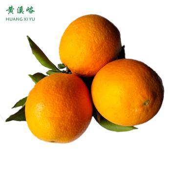 湖南常德石门纽荷尔橙/脐橙当季新鲜水果现摘现发带箱10斤装