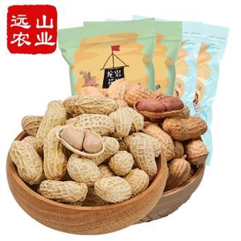 远山农业福建特产零食香酥带壳花生组合蒜香500g*2袋+咸酥500g*2
