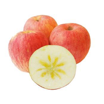 珍果年华 新疆阿克苏冰糖心苹果 净重5斤 果径75-80mm