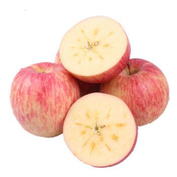 珍果年华 阿克苏冰糖心苹果礼盒装 净重8斤 果径90mm以上