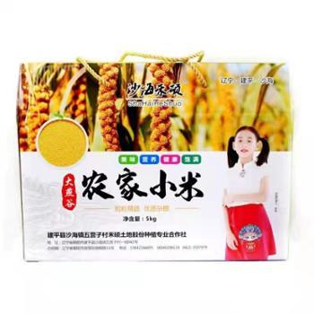 沙海禾硕大燕谷小米农家米礼盒装1*5Kg口感好,易携带